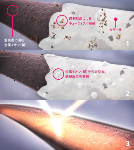 Illumina_Color_Technology_Inside_jp